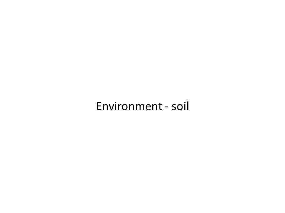 Environment - soil