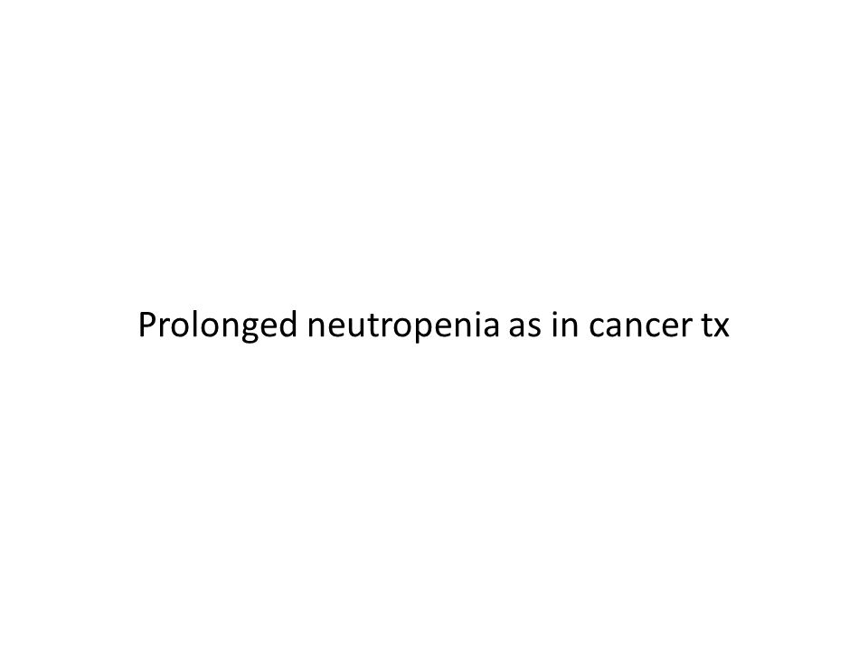 Prolonged neutropenia as in cancer tx