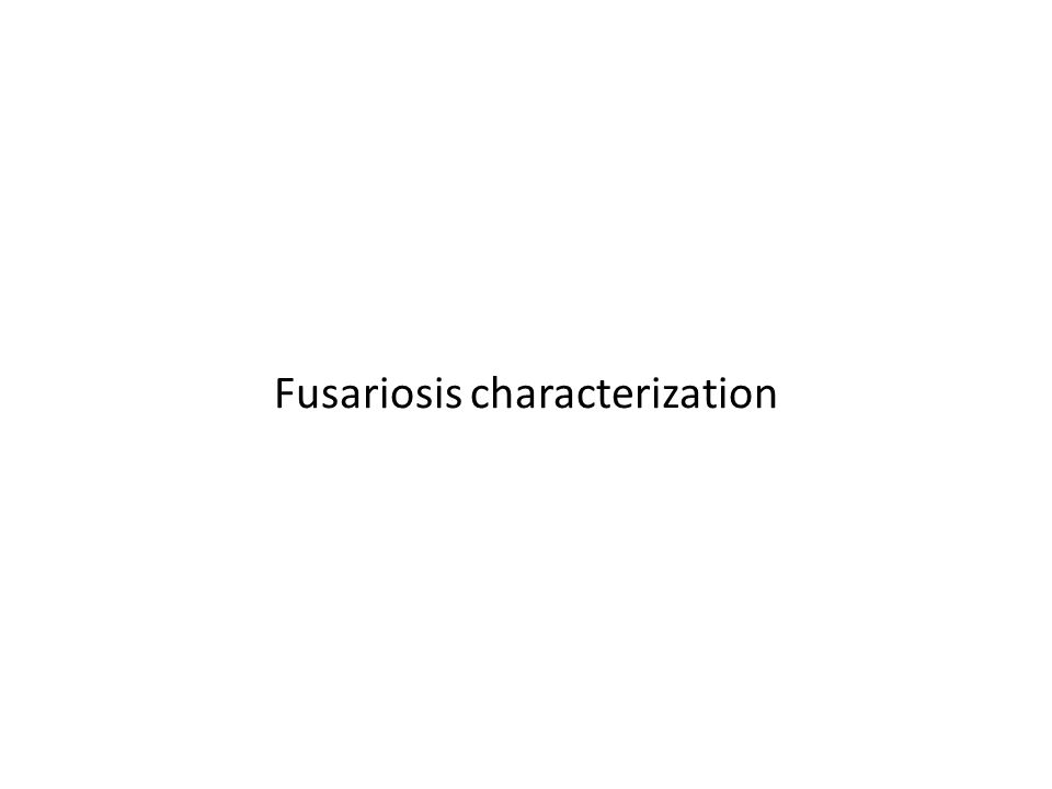 Fusariosis characterization