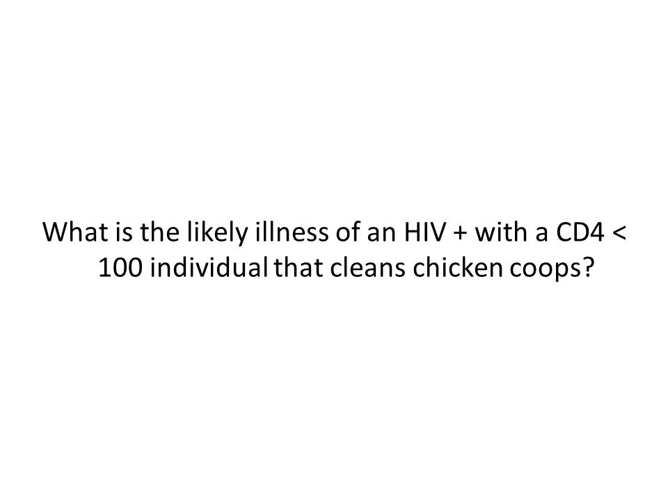 What is the likely illness of an HIV + with a CD4 < 100 individual that cleans chicken coops