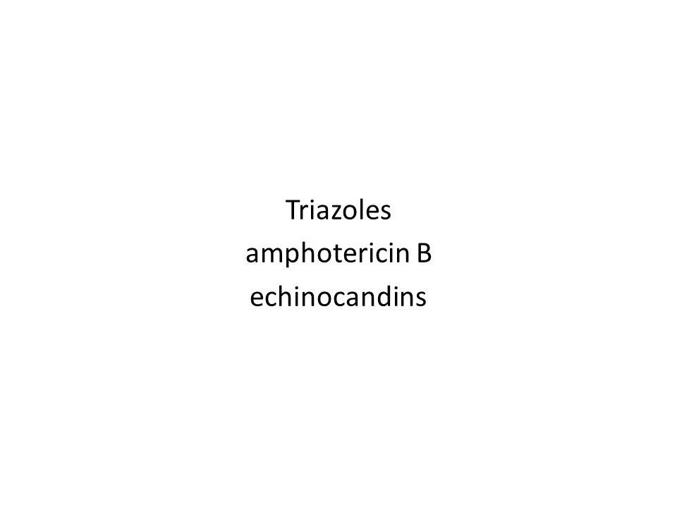 Triazoles amphotericin B echinocandins