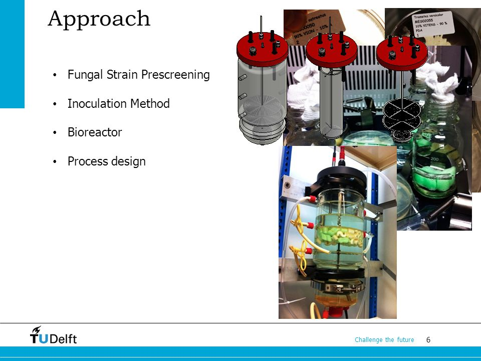 6 Challenge the future Approach Fungal Strain Prescreening Inoculation Method Bioreactor Process design