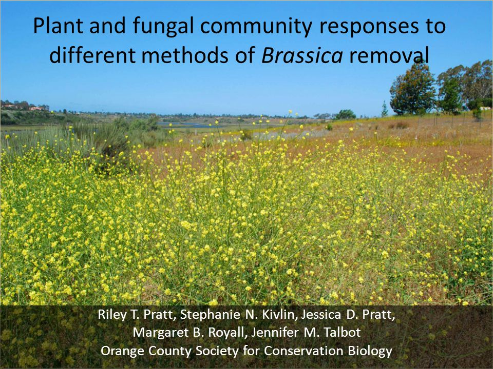 Plant and fungal community responses to different methods of Brassica removal Riley T.