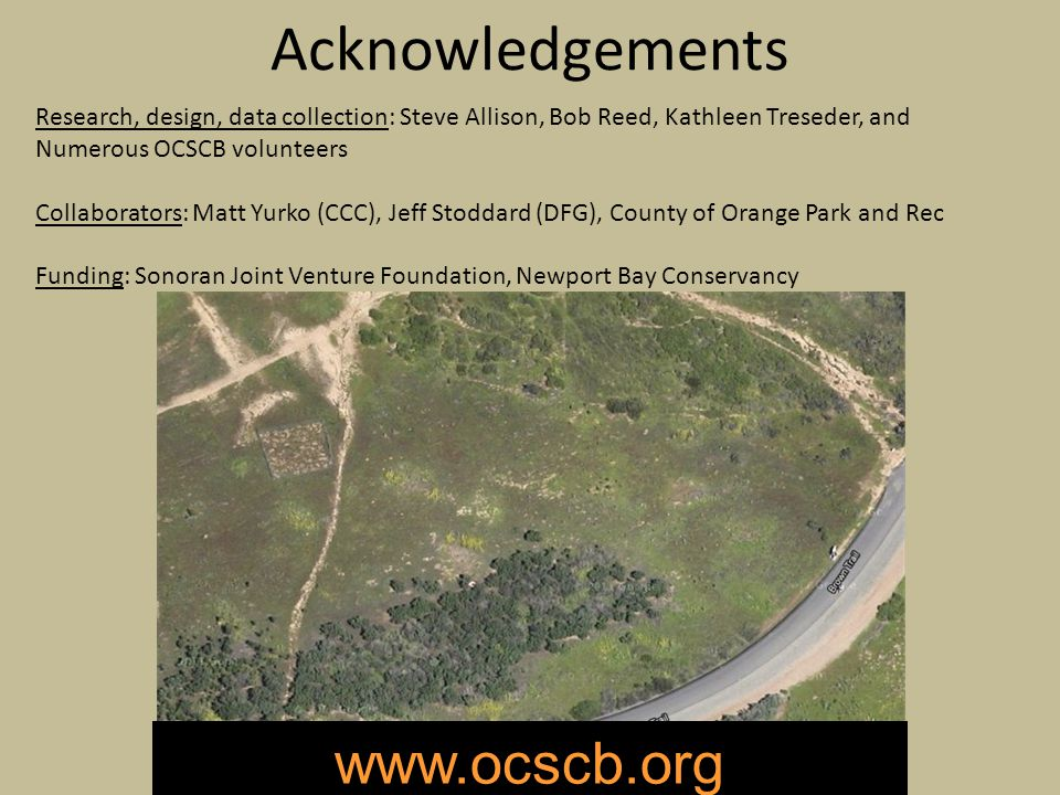 Acknowledgements Research, design, data collection: Steve Allison, Bob Reed, Kathleen Treseder, and Numerous OCSCB volunteers Collaborators: Matt Yurko (CCC), Jeff Stoddard (DFG), County of Orange Park and Rec Funding: Sonoran Joint Venture Foundation, Newport Bay Conservancy www.ocscb.org