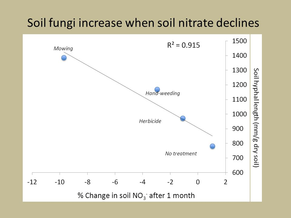 Soil fungi increase when soil nitrate declines Soil hyphal length (mm/g dry soil) % Change in soil NO 3 - after 1 month No treatment Herbicide Hand-weeding Mowing