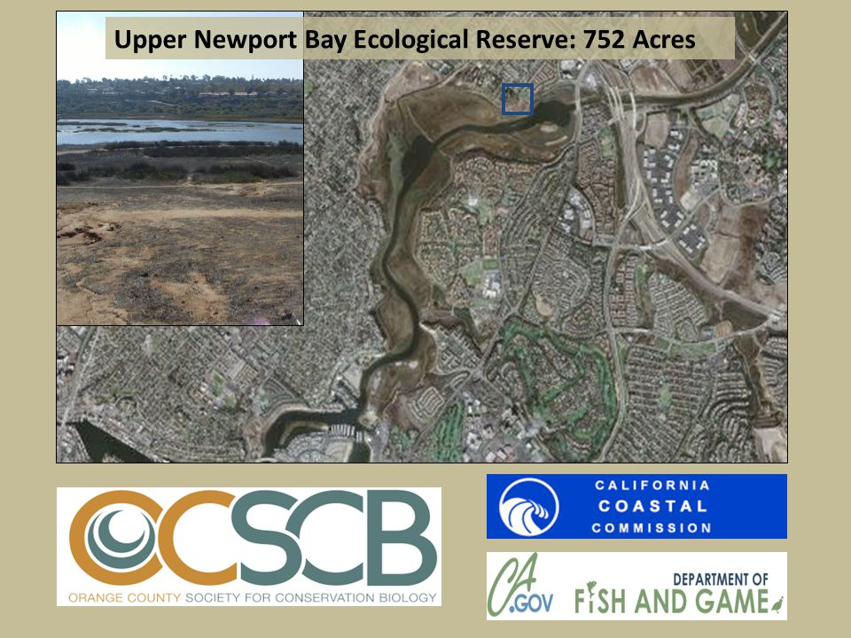 Upper Newport Bay Ecological Reserve: 752 Acres