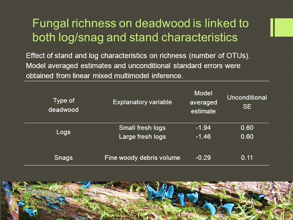 Fungal richness on deadwood is linked to both log/snag and stand characteristics Effect of stand and log characteristics on richness (number of OTUs).