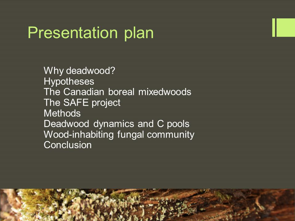 Presentation plan Why deadwood? Hypotheses The Canadian boreal mixedwoods The SAFE project Methods Deadwood dynamics and C pools Wood-inhabiting funga