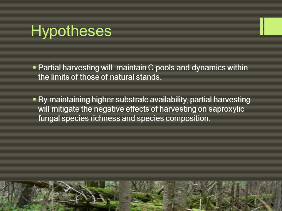 Hypotheses  Partial harvesting will maintain C pools and dynamics within the limits of those of natural stands.  By maintaining higher substrate ava