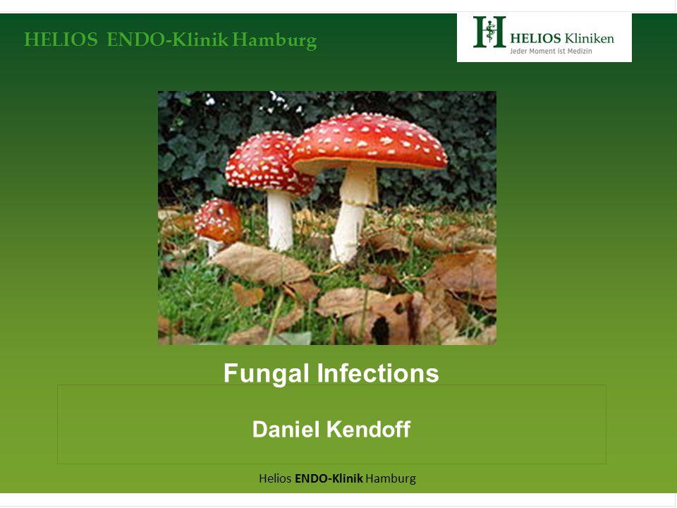 HELIOS ENDO-Klinik Hamburg Helios ENDO-Klinik Hamburg Fungal Infections Daniel Kendoff