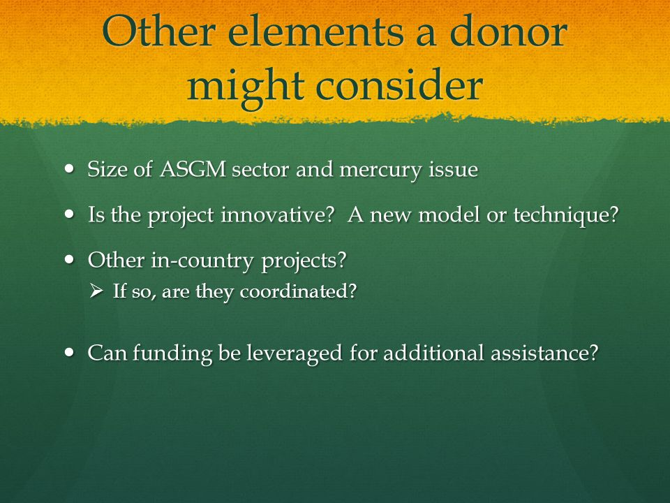 Other elements a donor might consider Size of ASGM sector and mercury issue Size of ASGM sector and mercury issue Is the project innovative.