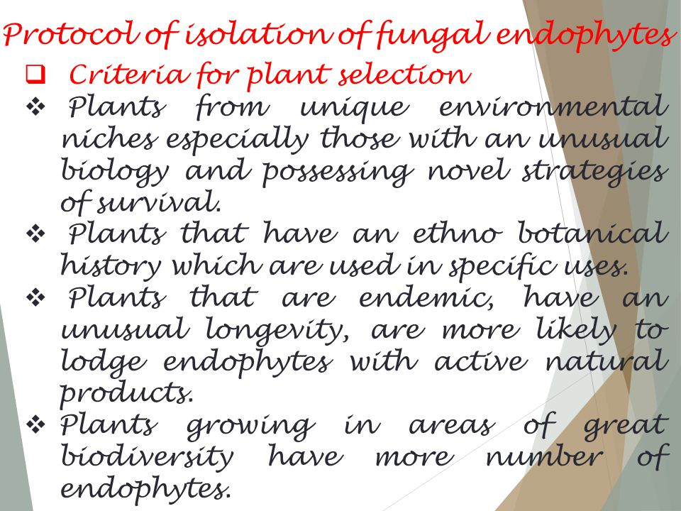 Protocol of isolation of fungal endophytes  Criteria for plant selection  Plants from unique environmental niches especially those with an unusual biology and possessing novel strategies of survival.