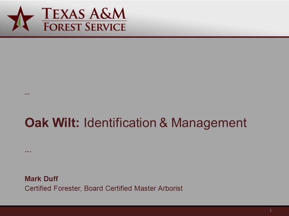 Oak Wilt: Identification & Management … ….