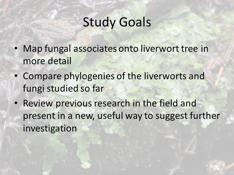 Study Goals Map fungal associates onto liverwort tree in more detail Compare phylogenies of the liverworts and fungi studied so far Review previous research in the field and present in a new, useful way to suggest further investigation