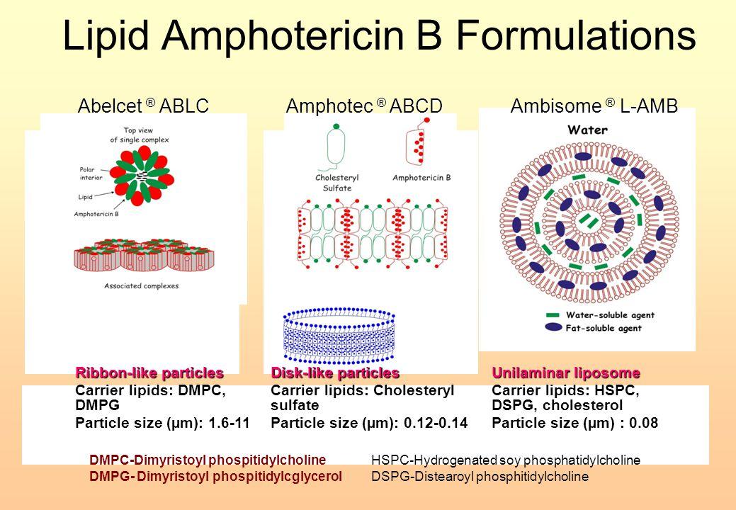 Lipid Amphotericin B Formulations Ribbon-like particles Carrier lipids: DMPC, DMPG Particle size : 1.6-11 Particle size (µm): 1.6-11 Abelcet ® ABLC Am