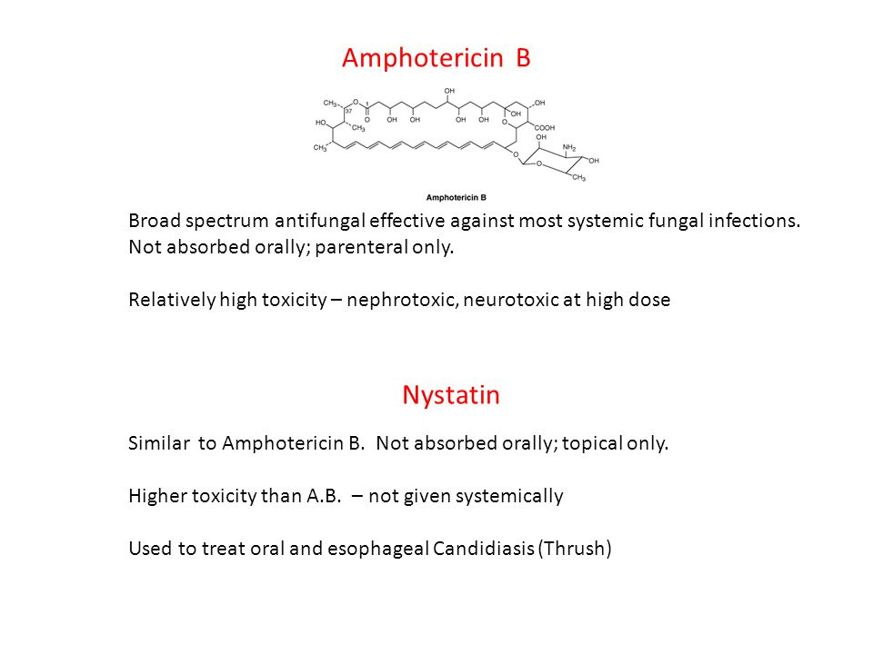 Amphotericin B Broad spectrum antifungal effective against most systemic fungal infections. Not absorbed orally; parenteral only. Relatively high toxi