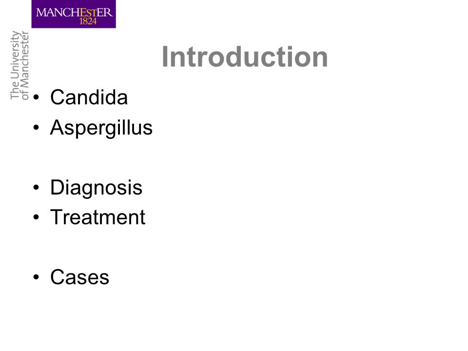 Introduction Candida Aspergillus Diagnosis Treatment Cases