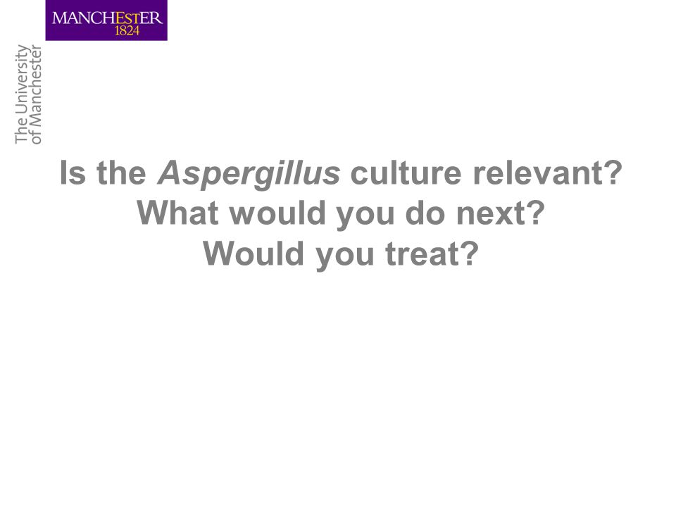 Is the Aspergillus culture relevant What would you do next Would you treat