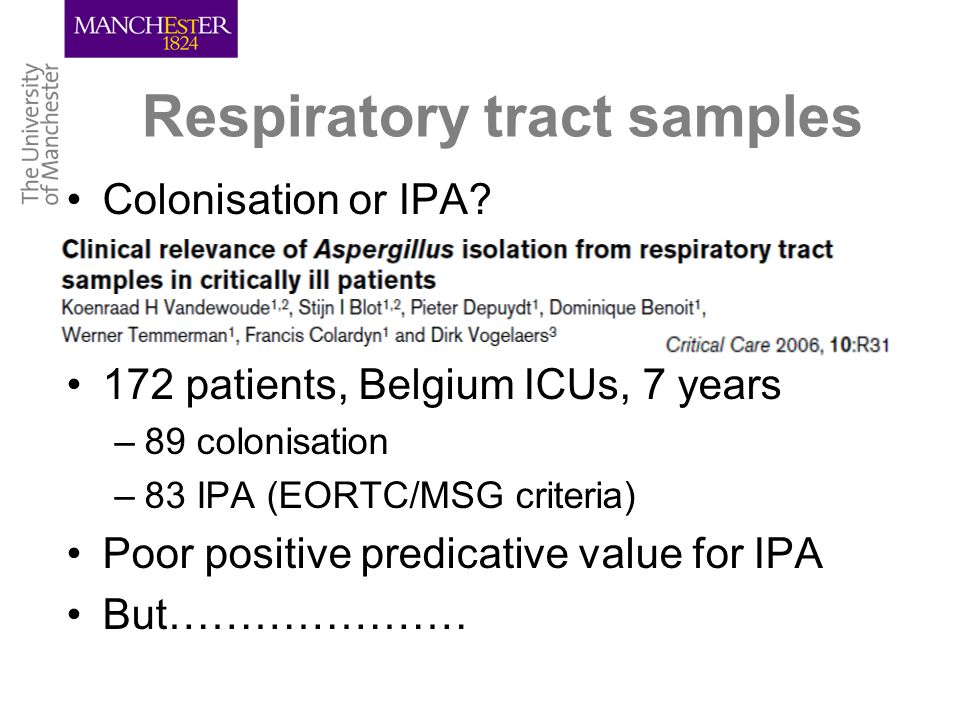 Respiratory tract samples Colonisation or IPA.