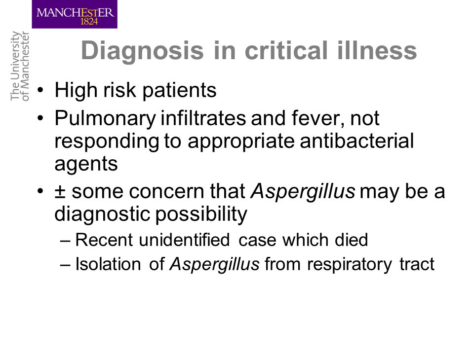 Diagnosis in critical illness High risk patients Pulmonary infiltrates and fever, not responding to appropriate antibacterial agents ± some concern that Aspergillus may be a diagnostic possibility –Recent unidentified case which died –Isolation of Aspergillus from respiratory tract