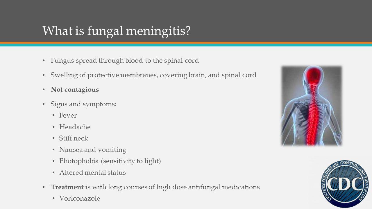 What is fungal meningitis.