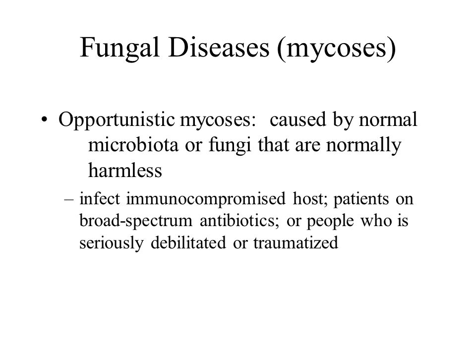 Fungal Diseases (mycoses) Opportunistic mycoses: caused by normal microbiota or fungi that are normally harmless –infect immunocompromised host; patie