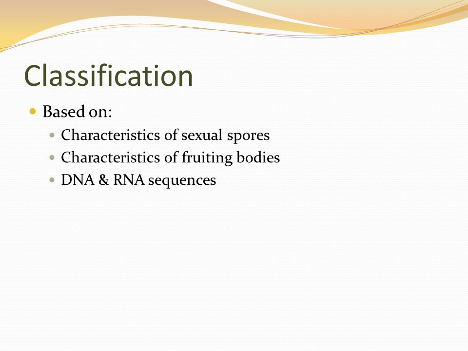 Classification Based on: Characteristics of sexual spores Characteristics of fruiting bodies DNA & RNA sequences