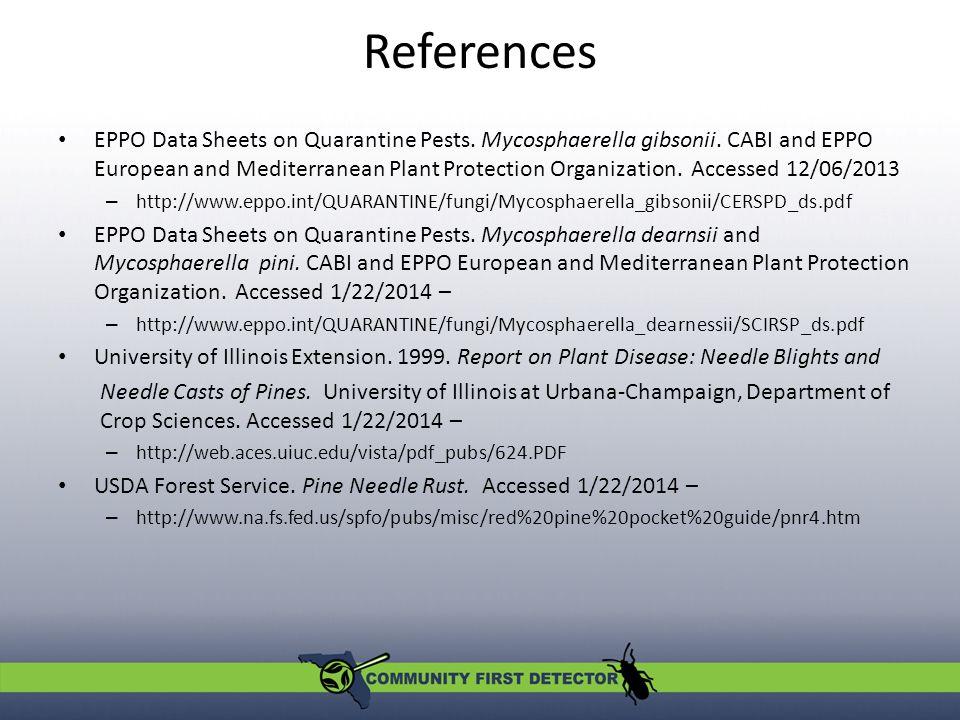 References EPPO Data Sheets on Quarantine Pests. Mycosphaerella gibsonii.