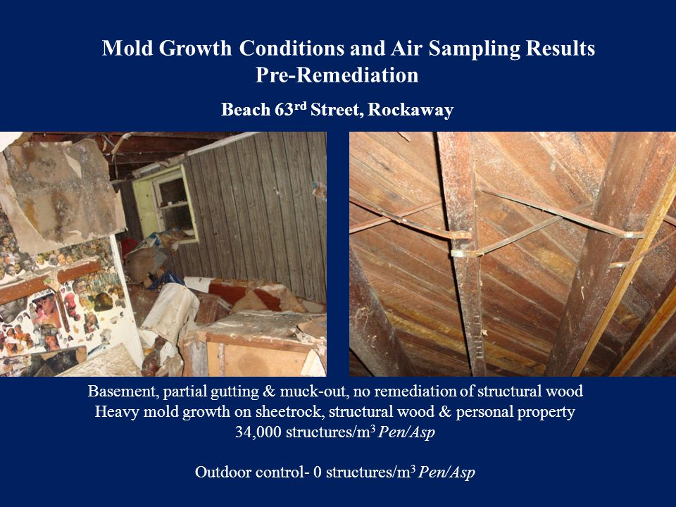 Basement, partial gutting & muck-out, no remediation of structural wood Heavy mold growth on sheetrock, structural wood & personal property 34,000 str