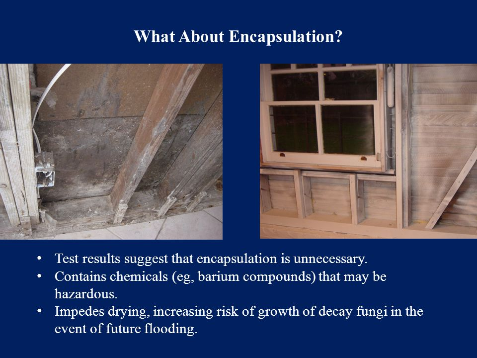 What About Encapsulation? Test results suggest that encapsulation is unnecessary. Contains chemicals (eg, barium compounds) that may be hazardous. Imp