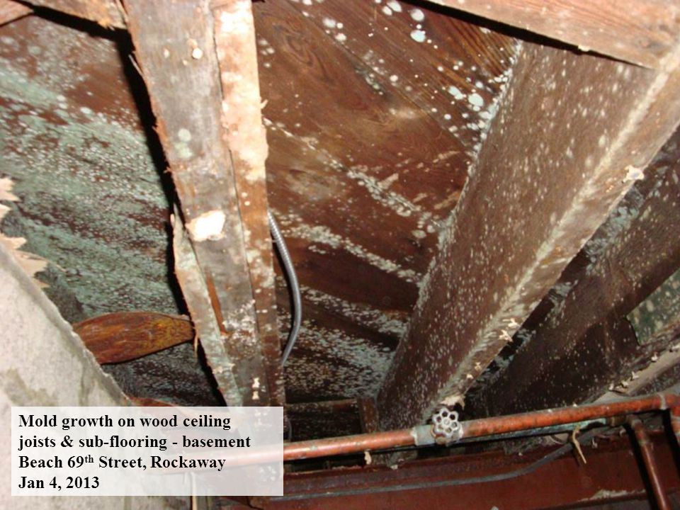 Mold growth on wood ceiling joists & sub-flooring - basement Beach 69 th Street, Rockaway Jan 4, 2013