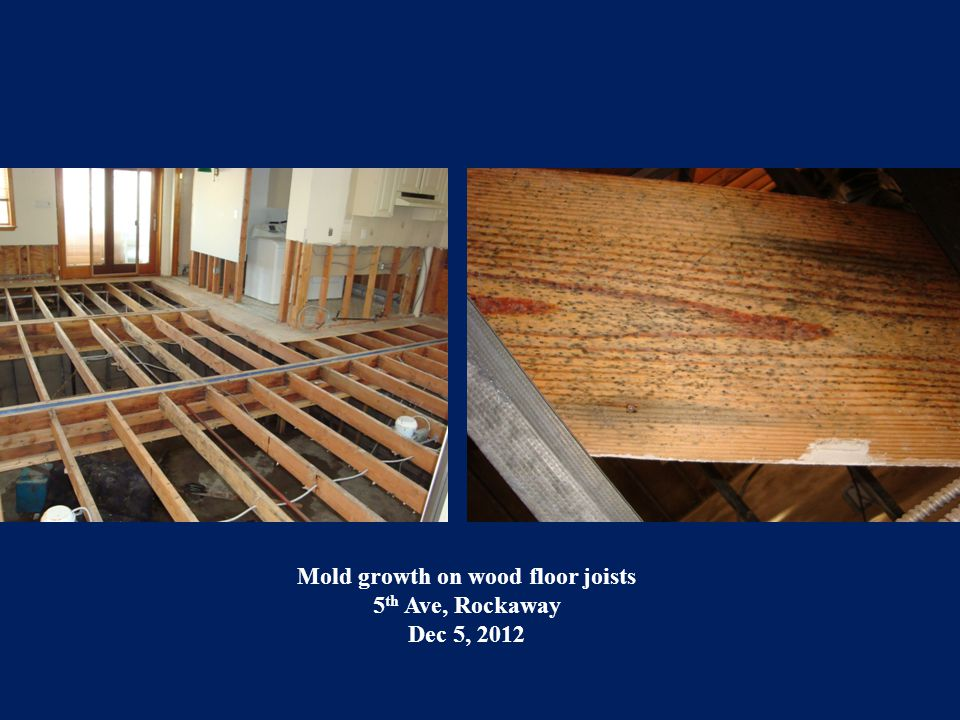 Mold growth on wood floor joists 5 th Ave, Rockaway Dec 5, 2012