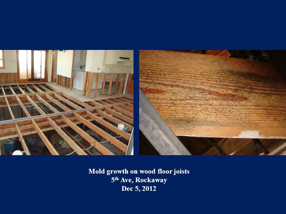 Mold growth on wood sheathing 1 st floor Beach 47 th Street, Rockaway Dec 14, 2012