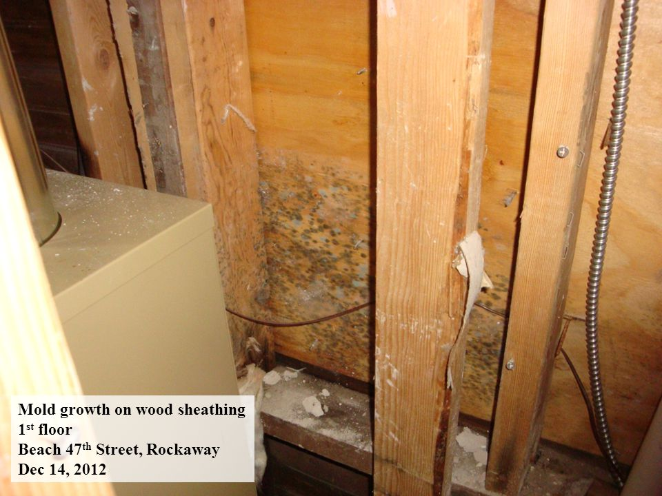 Mold growth on wood Sheathing – 1 st floor Beach 112 th Street, Rockaway Jan 4, 2013