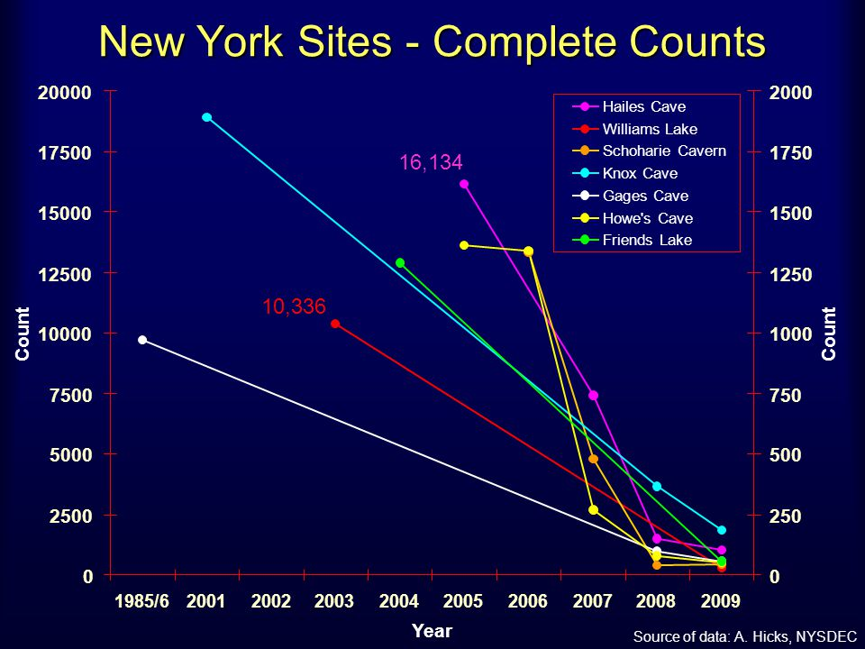 New York Sites - Complete Counts 16,134 10,336 0 2500 5000 7500 10000 12500 15000 17500 20000 1985/6200120022003200420052006200720082009 Year Count 0 250 500 750 1000 1250 1500 1750 2000 Count Hailes Cave Williams Lake Schoharie Cavern Knox Cave Gages Cave Howe s Cave Friends Lake Source of data: A.