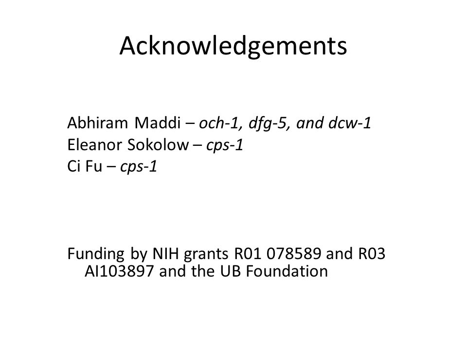 Acknowledgements Abhiram Maddi – och-1, dfg-5, and dcw-1 Eleanor Sokolow – cps-1 Ci Fu – cps-1 Funding by NIH grants R01 078589 and R03 AI103897 and the UB Foundation
