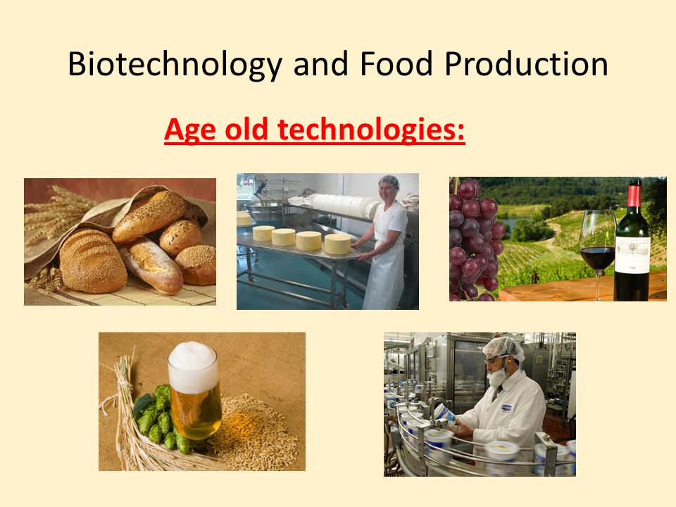 Biotechnology and Food Production Age old technologies: