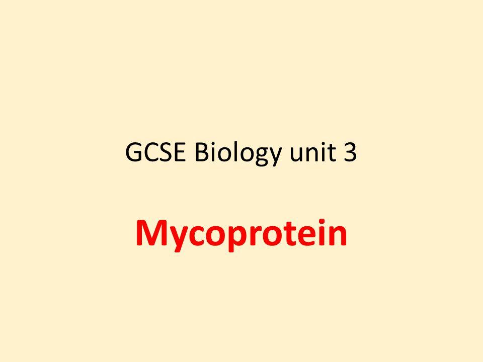 GCSE Biology unit 3 Mycoprotein