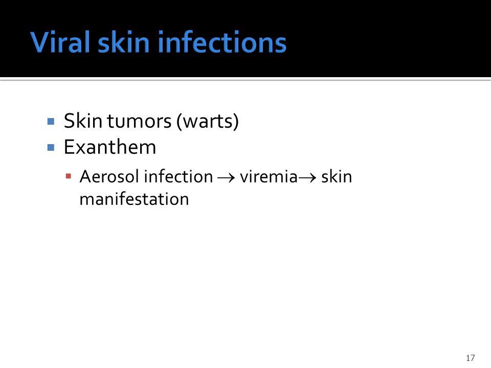  Skin tumors (warts)  Exanthem  Aerosol infection  viremia  skin manifestation 17