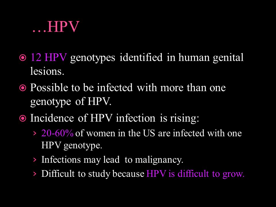  12 HPV genotypes identified in human genital lesions.