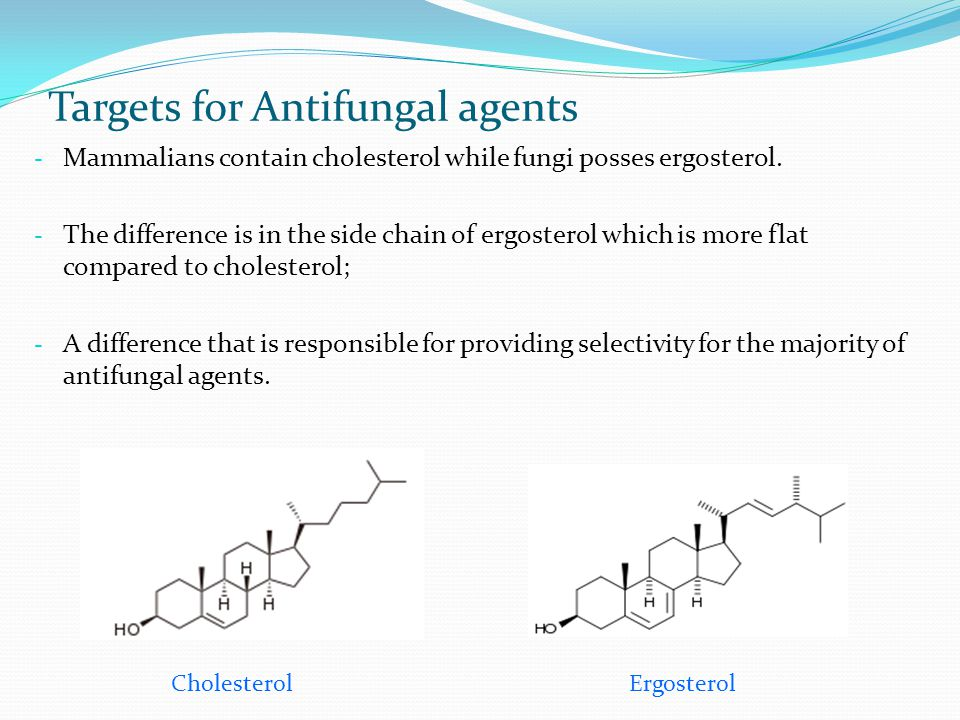 Targets for Antifungal agents - Mammalians contain cholesterol while fungi posses ergosterol. - The difference is in the side chain of ergosterol whic