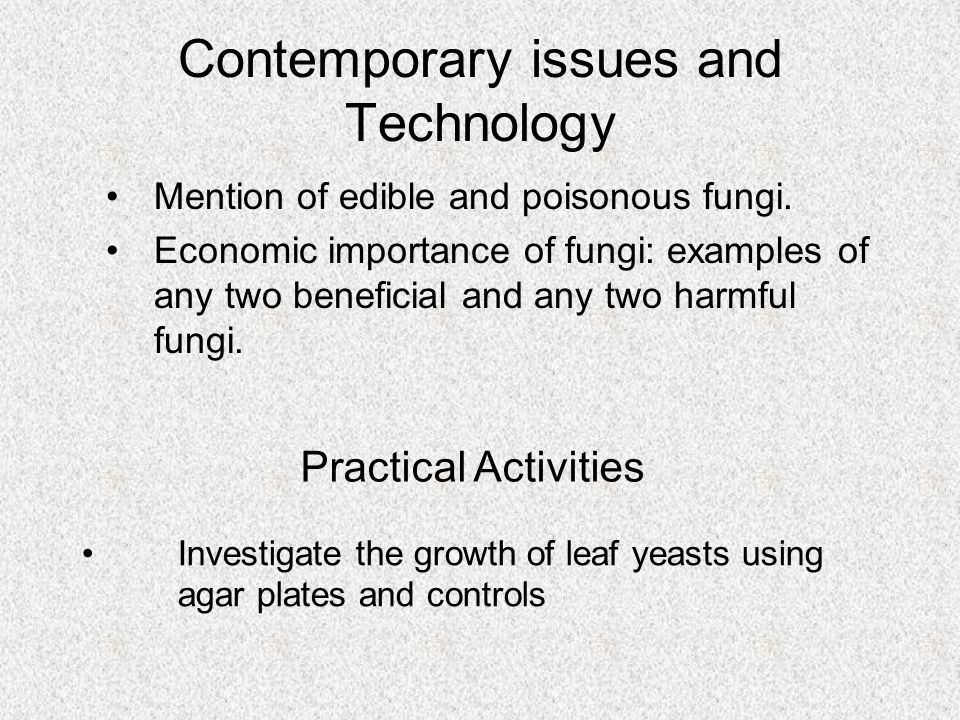 Mention of edible and poisonous fungi. Economic importance of fungi: examples of any two beneficial and any two harmful fungi. Practical Activities In
