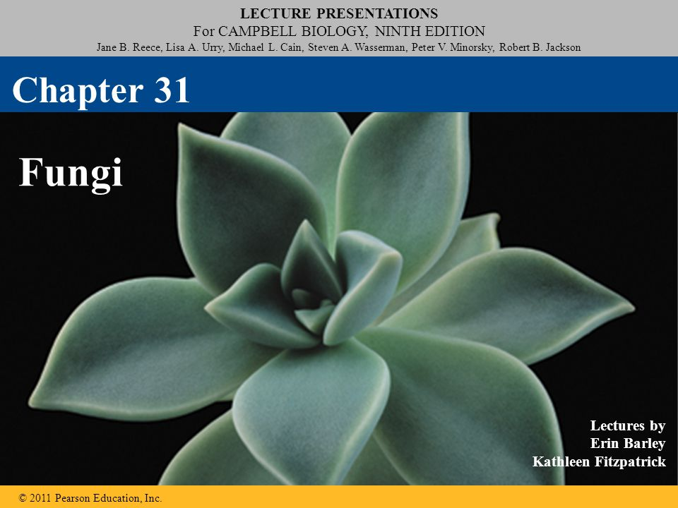 LECTURE PRESENTATIONS For CAMPBELL BIOLOGY, NINTH EDITION Jane B.