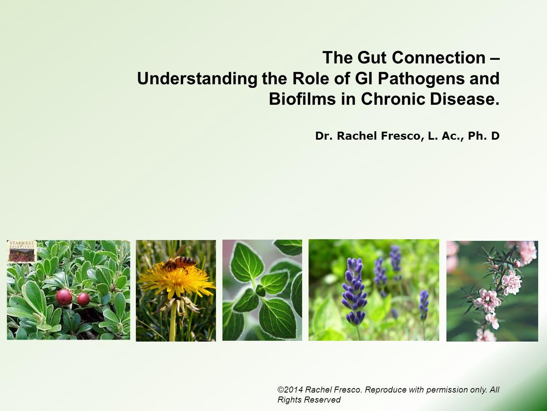 The Gut Connection – Understanding the Role of GI Pathogens and Biofilms in Chronic Disease. Dr. Rachel Fresco, L. Ac., Ph. D ©2014 Rachel Fresco. Rep
