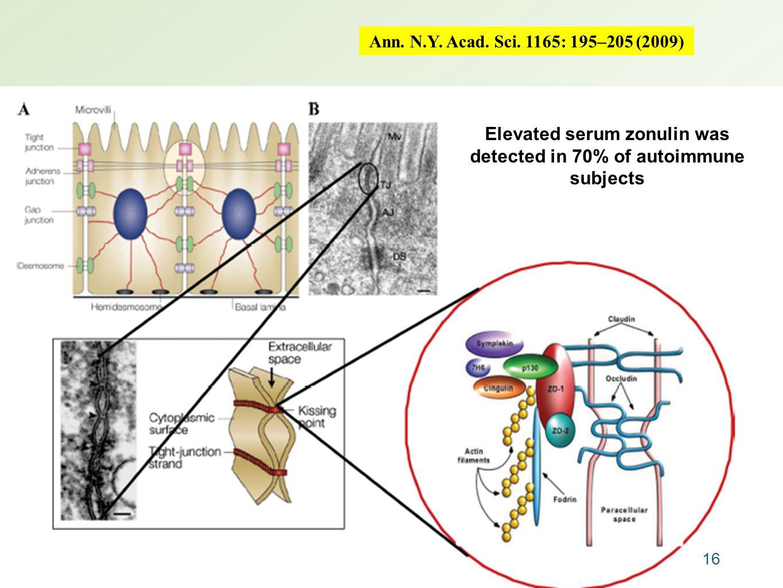 Ann. N.Y. Acad. Sci. 1165: 195–205 (2009) 16 Elevated serum zonulin was detected in 70% of autoimmune subjects