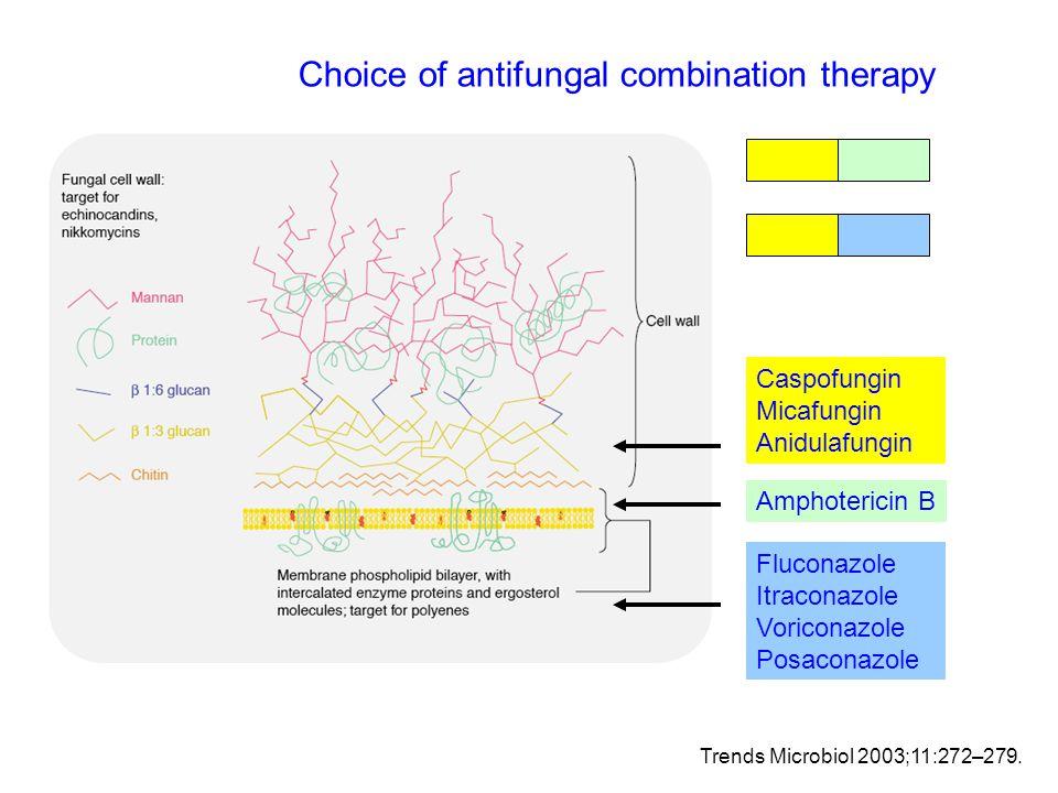 Trends Microbiol 2003;11:272–279. Amphotericin B Caspofungin Micafungin Anidulafungin Fluconazole Itraconazole Voriconazole Posaconazole Choice of ant