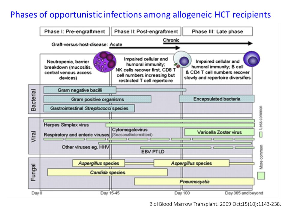 Biol Blood Marrow Transplant. 2009 Oct;15(10):1143-238. Phases of opportunistic infections among allogeneic HCT recipients