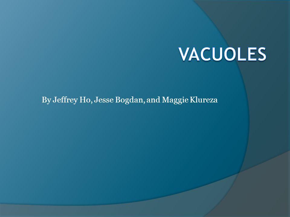 By Jeffrey Ho, Jesse Bogdan, and Maggie Klureza