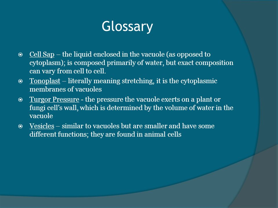Glossary  Cell Sap – the liquid enclosed in the vacuole (as opposed to cytoplasm); is composed primarily of water, but exact composition can vary from cell to cell.