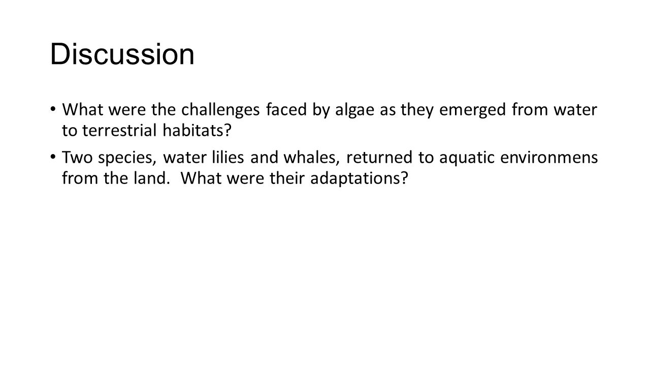 Discussion What were the challenges faced by algae as they emerged from water to terrestrial habitats? Two species, water lilies and whales, returned